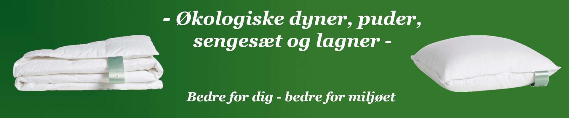 /Dyner_ko_2.jpg